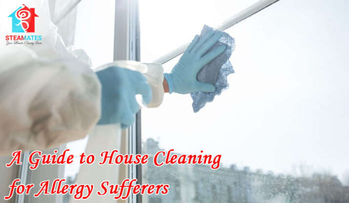 A Guide to House Cleaning for Allergy Sufferers