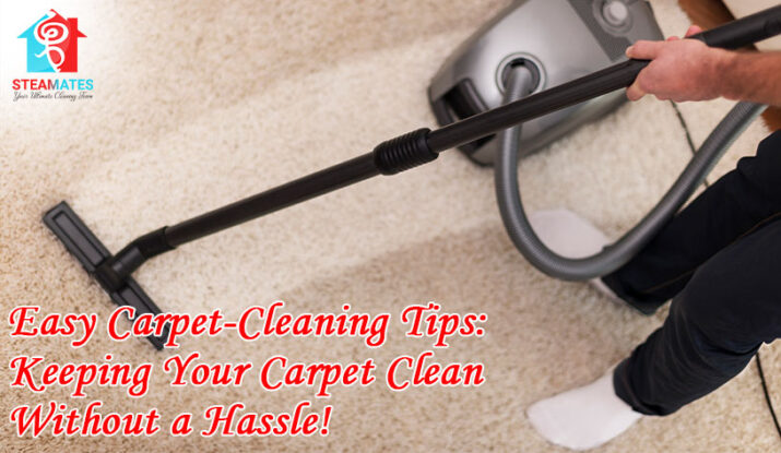 Easy Carpet Cleaning Tips Keeping Your Carpet Clean Without a Hassle