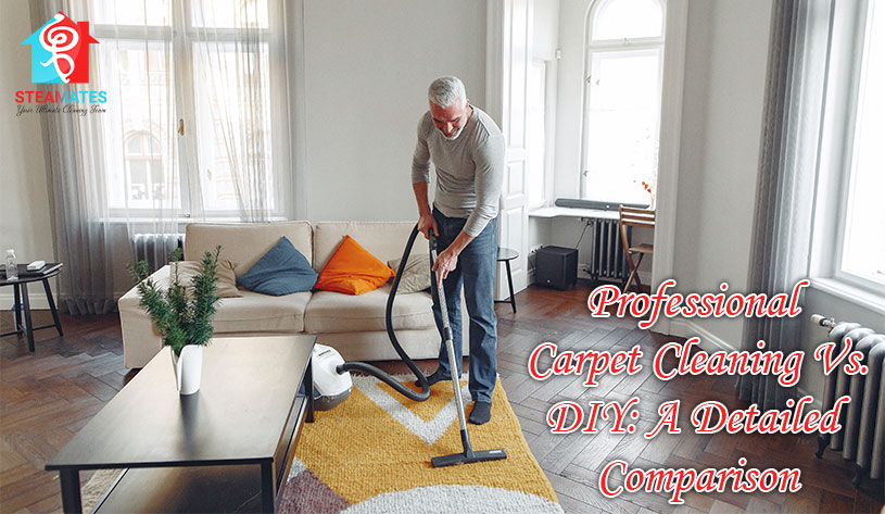 Professional Carpet Cleaning Vs DIY A Detailed Comparison